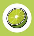 lemon citrus tropical image vector image