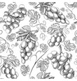 organic fresh seamless pattern vector image