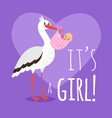 stork with bagirl vector image vector image