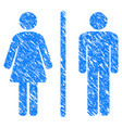 Toilet grunge icon vector image