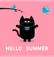 hello summer black cat photo camera bird vector image
