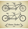 Tandem bicycle vector image