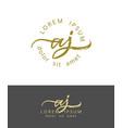 a j initials monogram logo design dry brush vector image vector image
