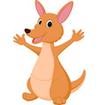 kangaroo cartoon vector image vector image