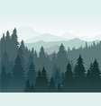 pine forest and mountains vector image vector image