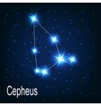 The constellation Cepheus star in the night sky vector image vector image