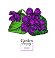 violet flower drawing hand drawn floral vector image vector image