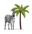 zebra and coconut palm tree - exotic cartoon vector image vector image