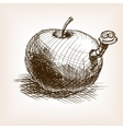 Apple fruit hand drawn sketch style vector image vector image