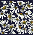 chamomile flowers seamless patern vector image