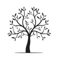 natural tree with leaves vector image