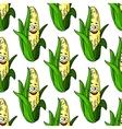 Ripe corn seamless pattern vector image