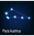 The constellation Piscis Austrinus star in the vector image