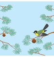 titmouse on pine branch vector image vector image