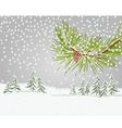 Winter pine branch with snow and pine cone vector image vector image