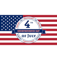American Independence Day celebration flag vector image