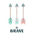 arrows in boho style vector image