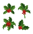 Christmas berry decoration set vector image vector image