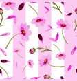 cosmos wedding-flowers in bloom seamless repeat vector image