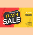 flash sale banner template special offer for big vector image vector image