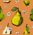hand drawn sketch seamless pattern of pears vector image vector image