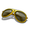 stylish sunglasses with polarized yellow glasses vector image