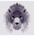 Violet low poly lion vector image