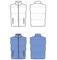 Waistcoat vector image