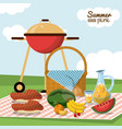 colorful poster of summer picnic with field vector image