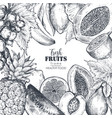 frame with hand drawn fresh fruits in vector image