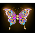 Gold Butterfly Peacock vector image vector image