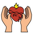 hand human with sacred heart of jesus vector image