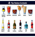 italian cocktails and ingredients isolated vector image