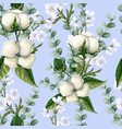 seamless pattern with cotton flowers eucalyptus vector image vector image