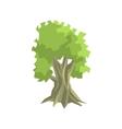 Tall Foliage Tree Jungle Landscape Element vector image vector image