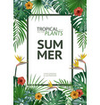 tropical palm leaves background invitation vector image vector image