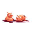 two cute pigs playing in mud cartoon farm animals vector image