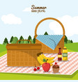colorful poster of summer picnic with field vector image vector image