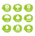 eco friendly organic tree logos on green grunge vector image