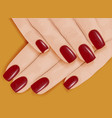 female hands with manicure red nail polish vector image