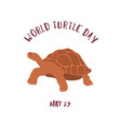 may 23 - world turtle day vector image vector image