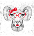 retro hipster animal ram or mouflon vector image