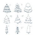 set of hand drown Fir trees vector image vector image