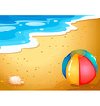 A ball at the beach vector image vector image