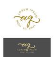 a q initials monogram logo design dry brush vector image vector image