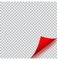 Curled corner of paper vector image vector image