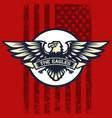 eagle icon logo american flag vector image