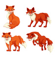 Four foxes in different poses vector image