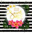 hello summer calligraphic inscription vector image