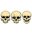 human skulls in engraving style design element vector image